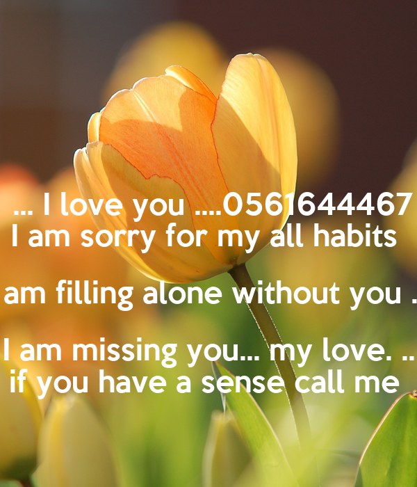 I Love You 0561644467 I Am Sorry For My All Habits I Am Filling