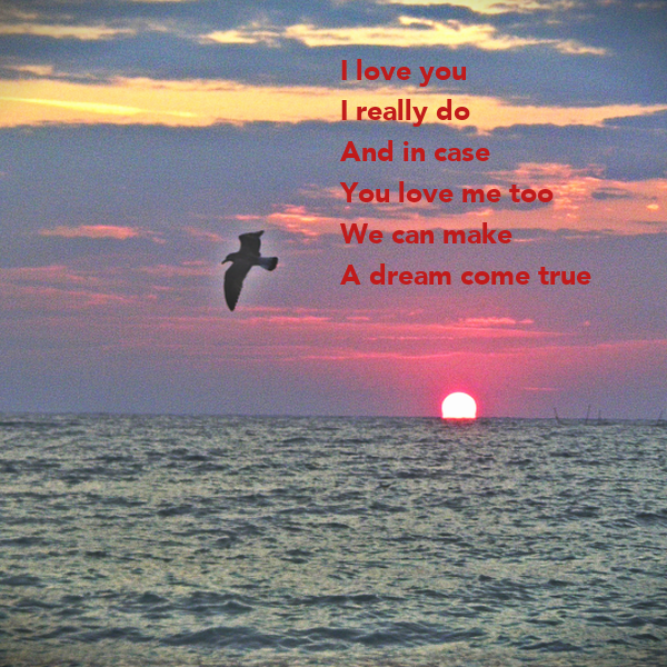 I Love You I Really Do And In Case You Love Me Too We Can -4426