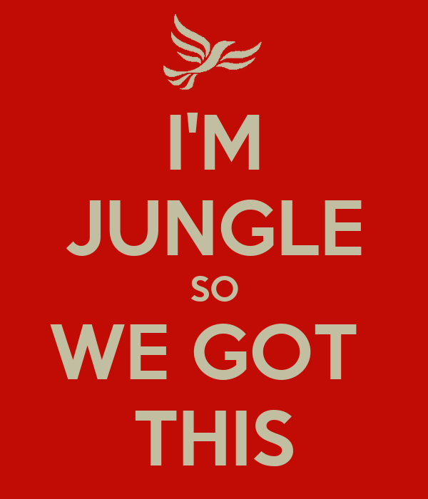 I'M JUNGLE SO WE GOT THIS Poster WOUTER Keep Calm o Matic