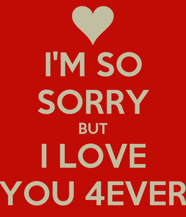 I M Sorry Love Quotes Beauteous Im Sorry Babe I Love You Quotes How To Get A Shy Guy To Make A Move