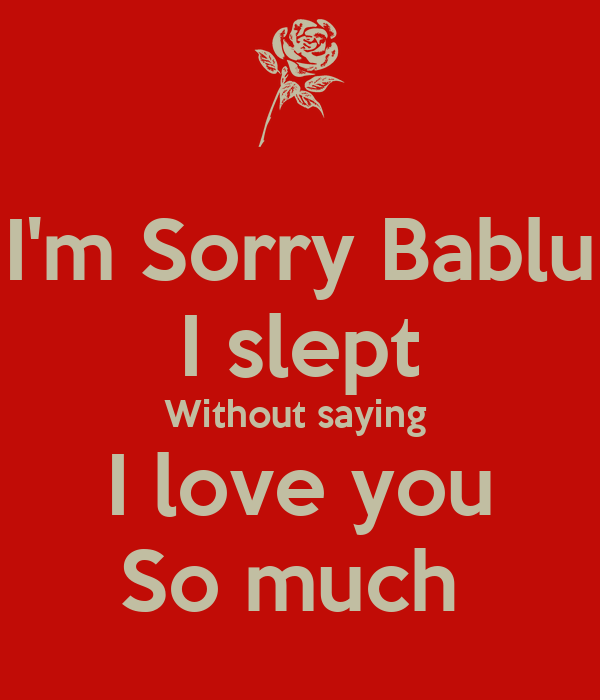 Im Sorry Bablu I Slept Without Saying I Love You So Much Poster