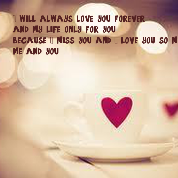 I will always love you foreverand my life only for youbecause I miss you and I love you so muchme and you