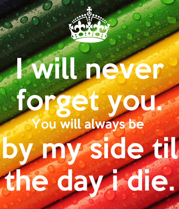 I Will Never Forget You You Will Always Be By My Side Til The Day I
