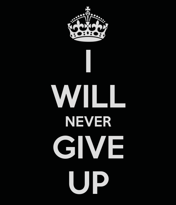 essay on i will never give up essay on i will never give up
