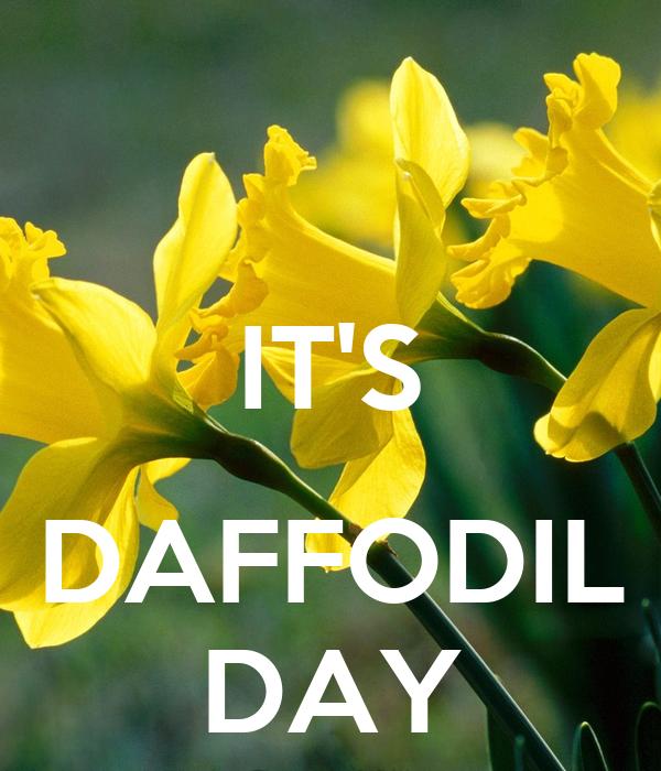 daffodil day - photo #1