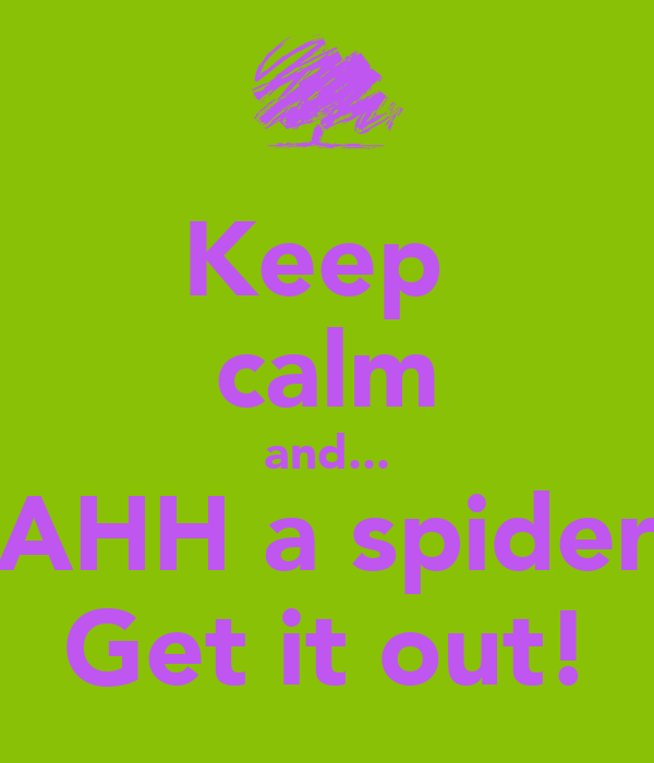Keep  calm and... AHH a spider Get it out!