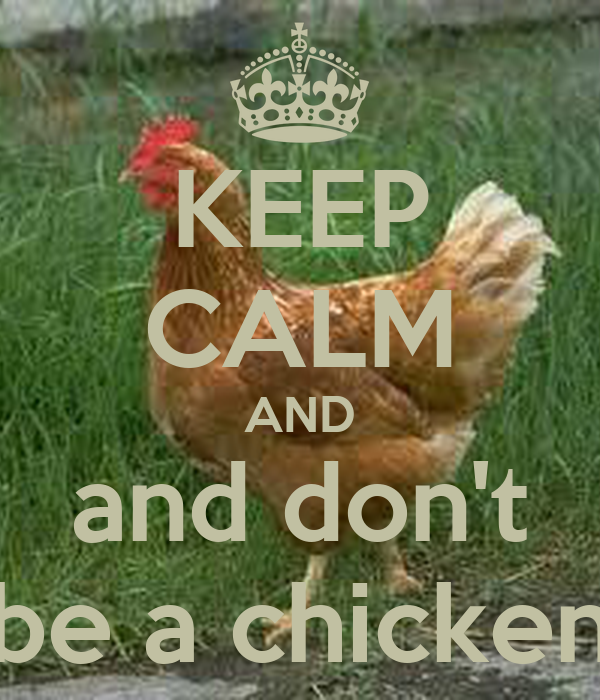 Keep Calm and Keep Chickens Funny Hens Shoulder Bodysuits as pictureNewborn