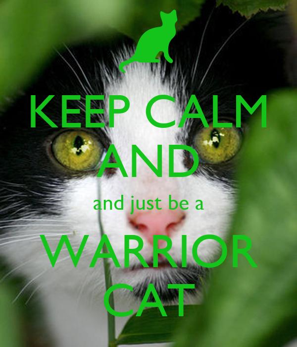 Cat Warrior Posters