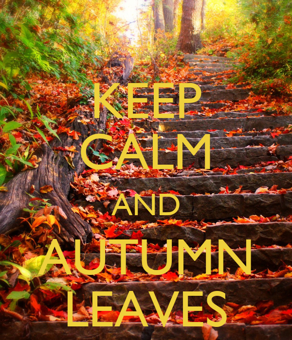 KEEP CALM AND AUTUMN LEAVES - KEEP CALM AND CARRY ON Image Generator