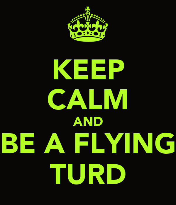 F-35 Development and News Thread: - Page 21 Keep-calm-and-be-a-flying-turd