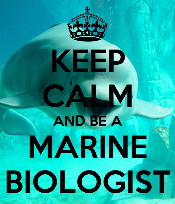 KEEP CALM AND BE A MARINE BIOLOGIST Poster | nil | Keep ...