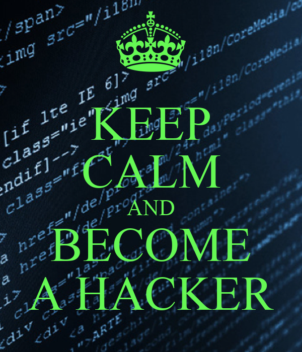 How To Become A Hacker  catborg