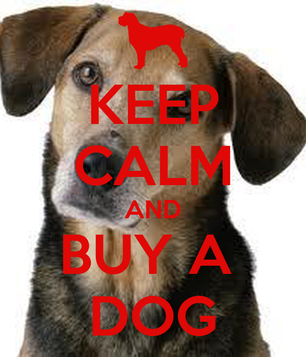 keep calm and buy a dog keep calm and carry on image generator buy a dog 600x700