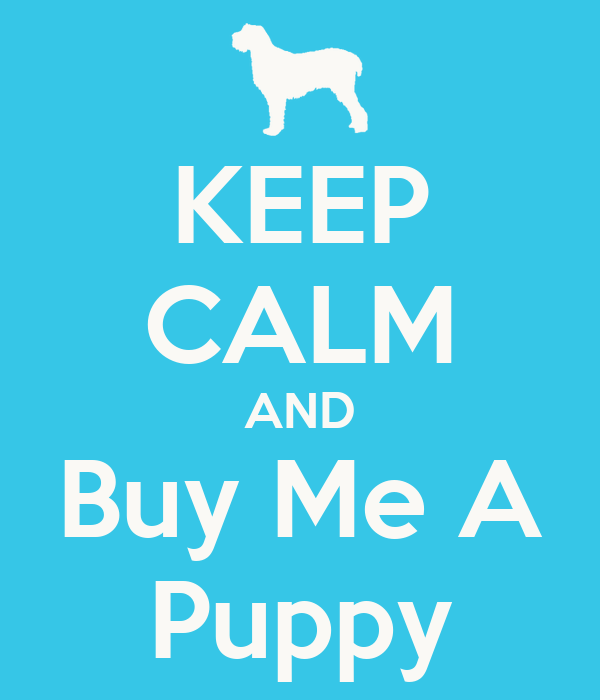 Buy Me: KEEP CALM AND Buy Me A Puppy Poster