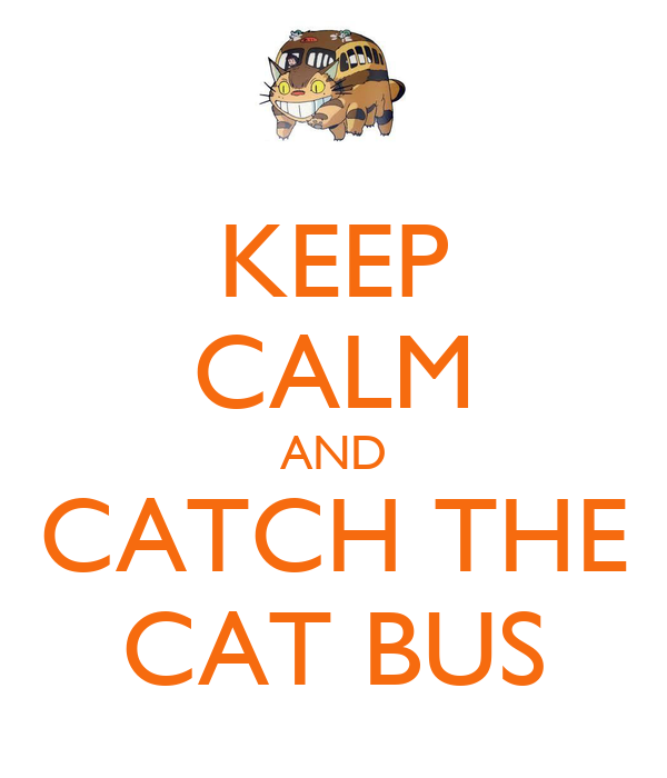 How To Keep Cat Calm On Bus