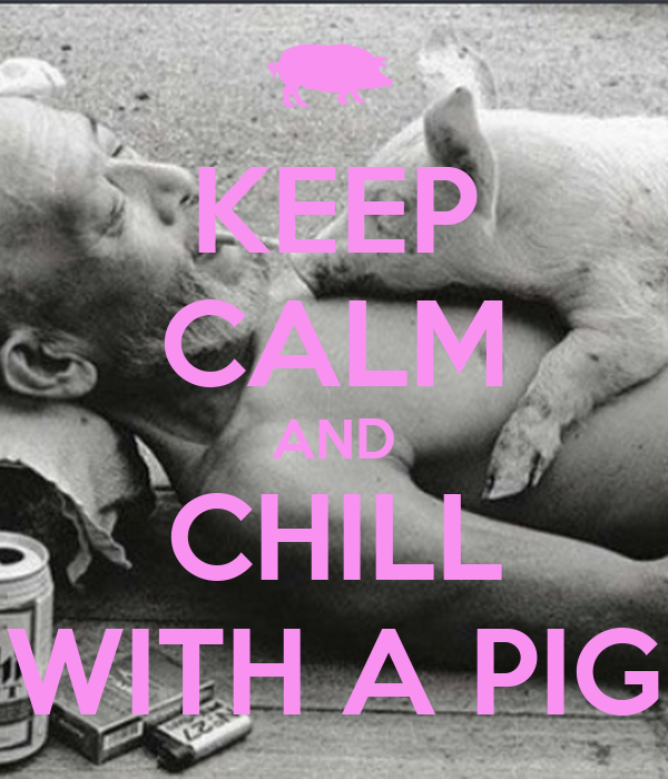 KEEP CALM AND CHILL WITH A PIG - KEEP CALM AND CARRY ON ...