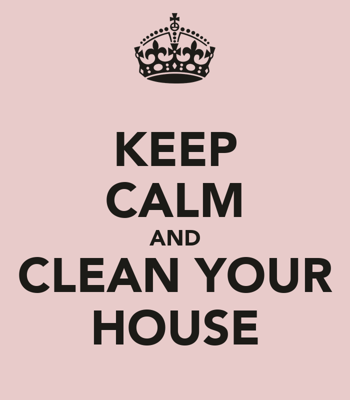 Cleaning House How To Clean Your House