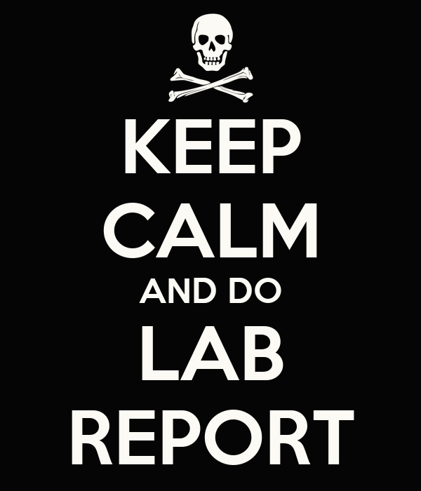 Webpages That Do Lab Report