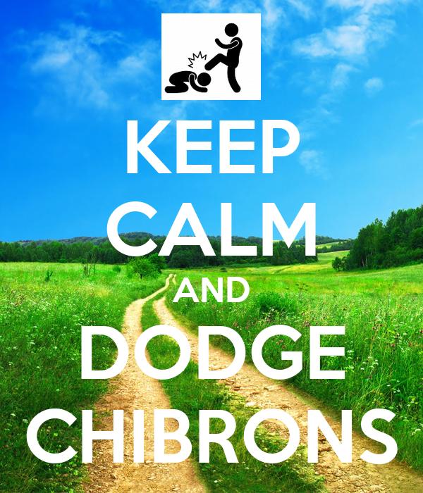 calm  dodge chibrons poster bernard  calm  matic