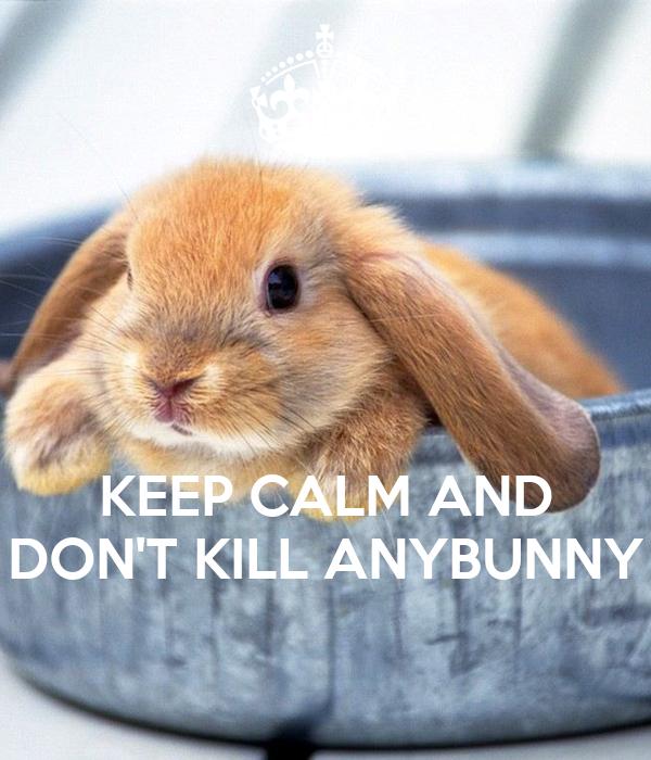 any bunny