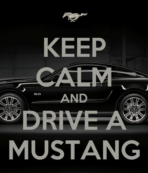 Funny Car Mats Uk