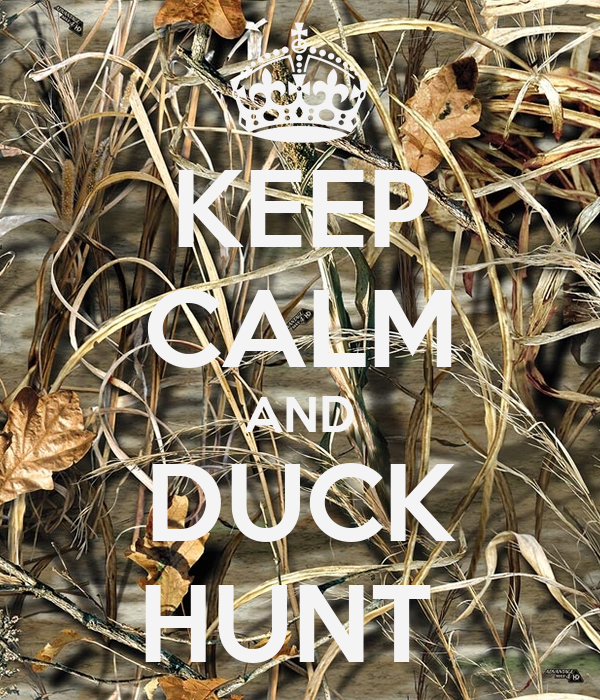 Duck hunting wallpaper for iphone duck hunting wallpaper for iphone photo5 voltagebd Choice Image