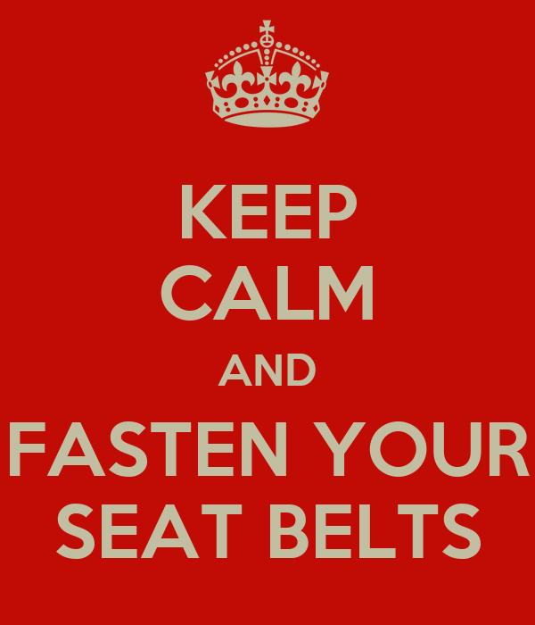 Seat Belt Belts For Men Bing Images