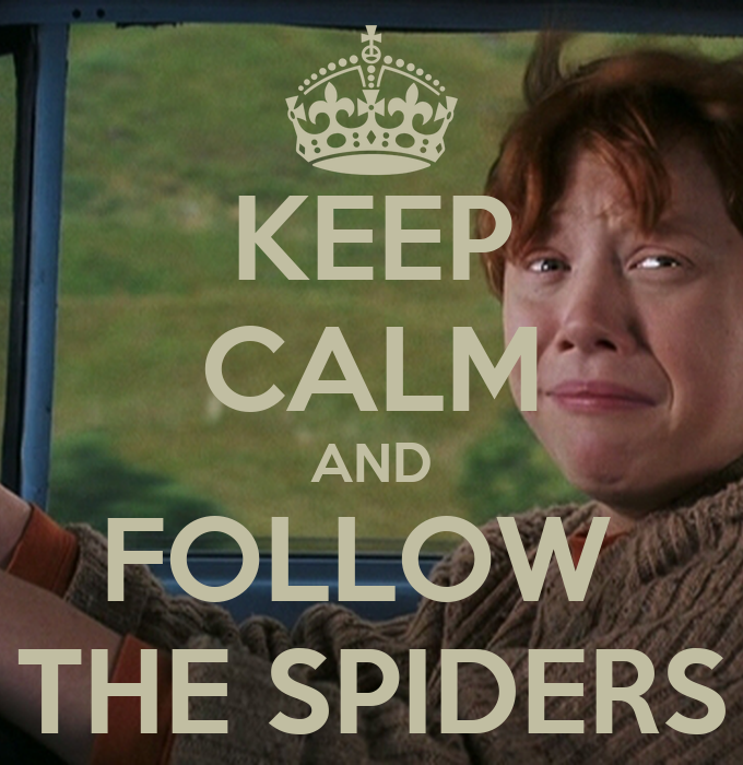 Confieso... - Página 10 Keep-calm-and-follow-the-spiders-26