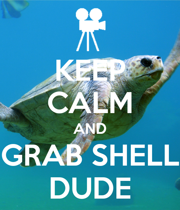 KEEP CALM AND GRAB SHELL DUDE Poster | mina95 | Keep Calm ...