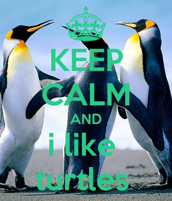 i Like Turtles Keep Calm And i Like Turtles