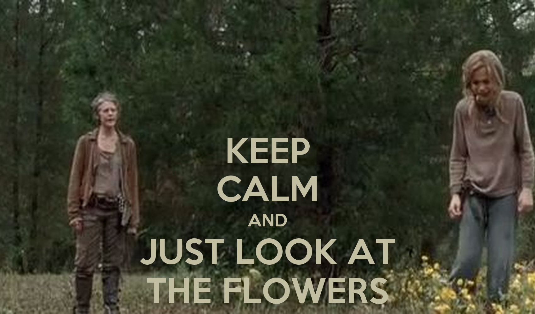 KEEP CALM AND JUST LOOK AT THE FLOWERS Poster danasharada