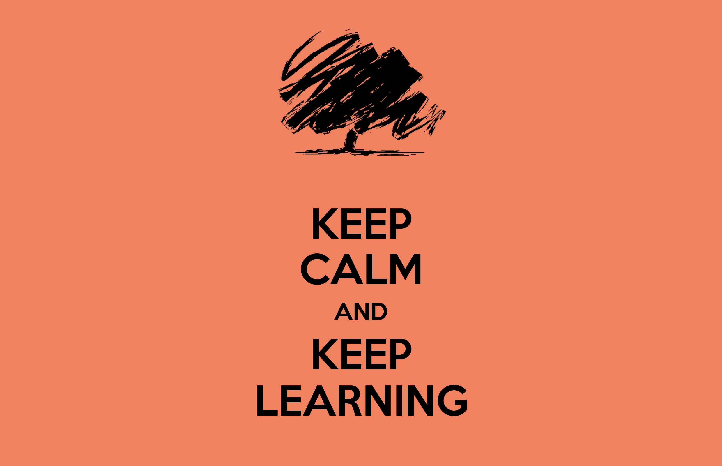 KEEP CALM AND KEEP LEARNING Poster
