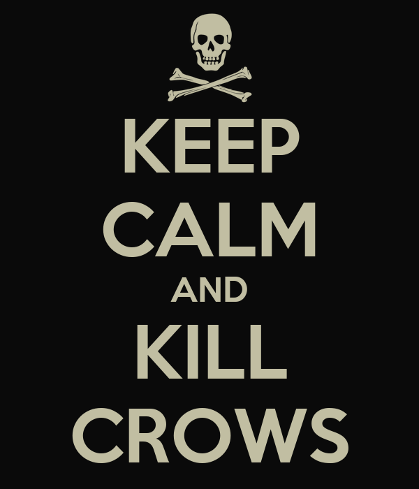 keep-calm-and-kill-crows.png