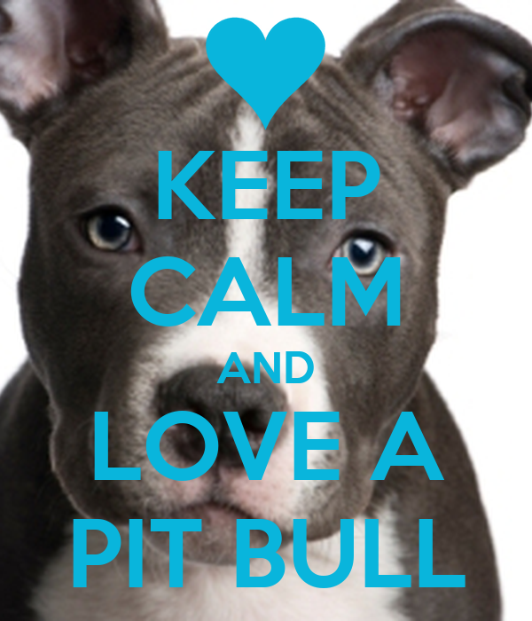 how to keep a pitbull clean