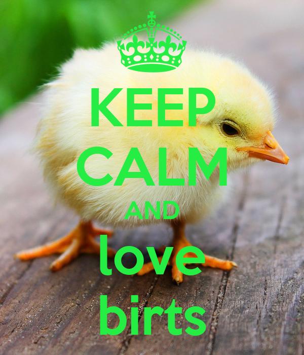 KEEP CALM AND love birts Poster | patrick | Keep Calm-o-Matic