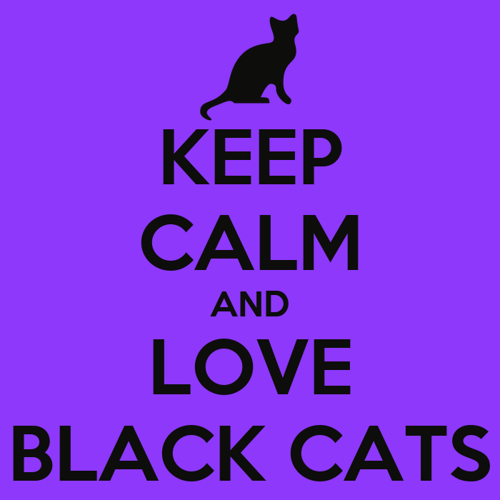 Keep Calm And Love Cats Poster Keep Calm And Love Black Cats