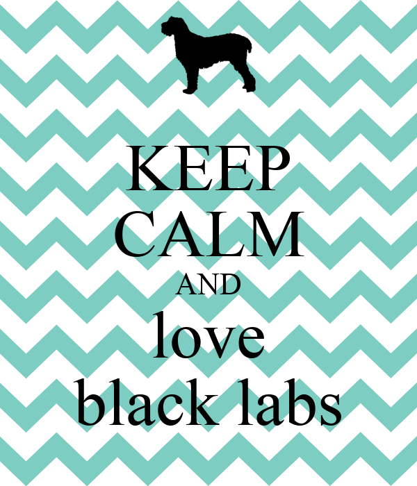Keep Calm And Love Black Labs KEEP CALM AND love black labs