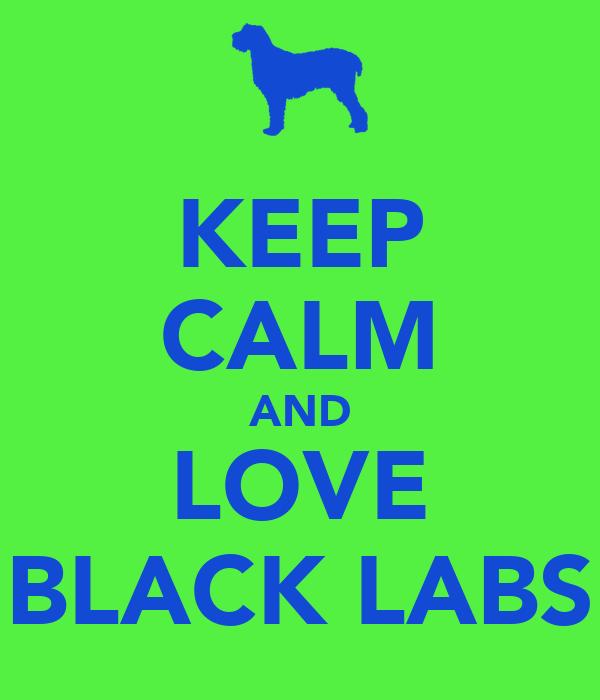 Keep Calm And Love Black Labs KEEP CALM AND LOVE BLA...