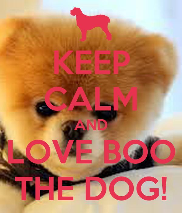 Keep Calm And Love Boo The Dog Poster Resham Keep