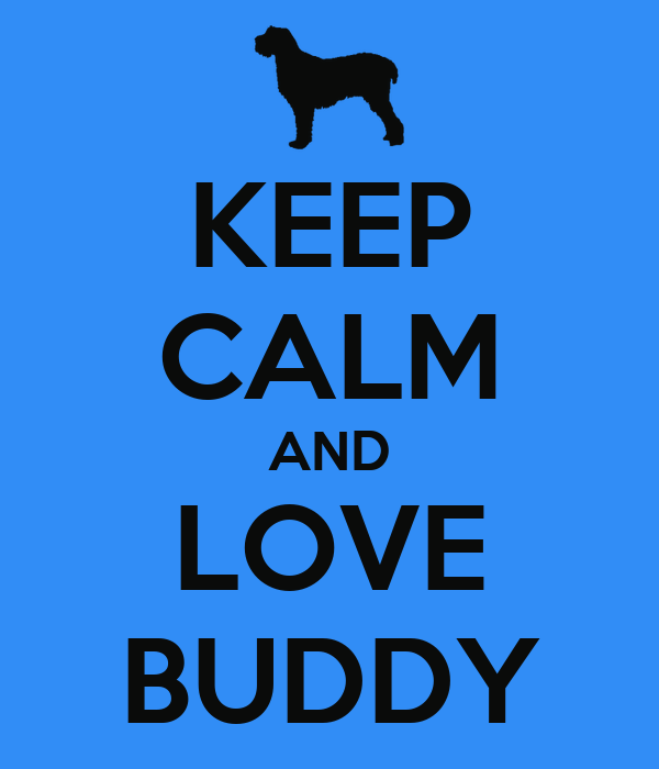 Love Buddy 31