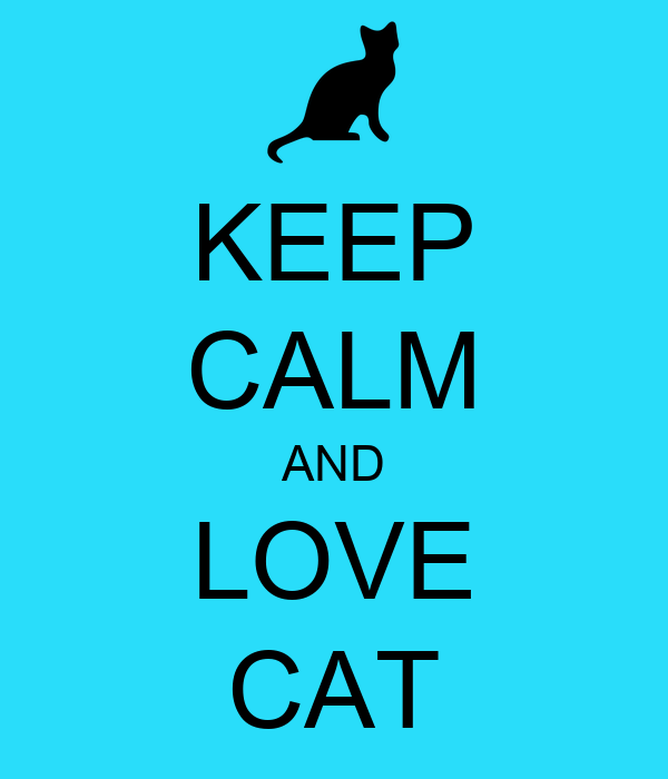 This is so dang awesome and i was just like wow i did not know how to explan this Keep-calm-and-love-cat-843