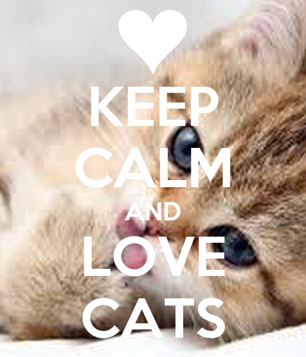 KEEP CALM AND LOVE CATS Poster | lawgeorgia | Keep Calm-o ...