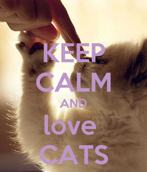 KEEP CALM AND love CATS Poster | LOVE CATS | Keep Calm-o-Matic