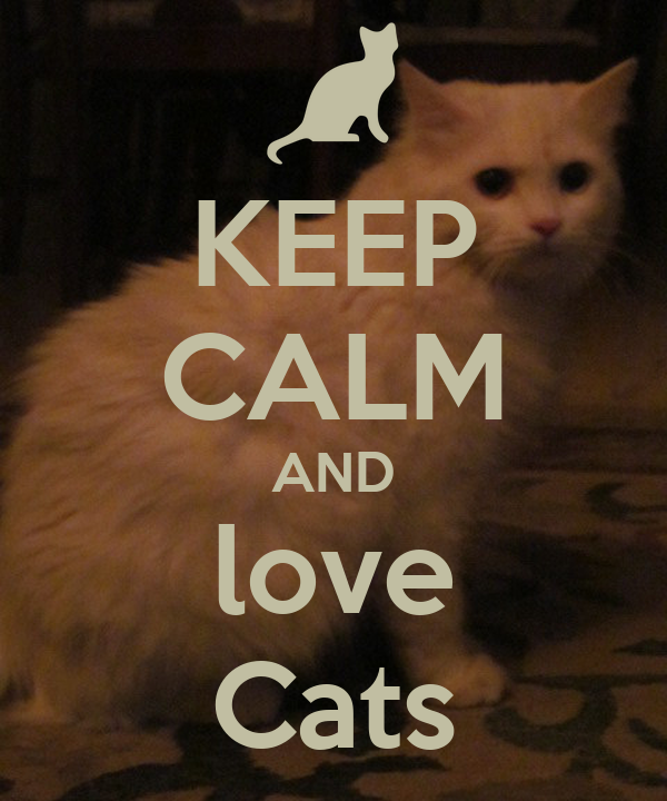 Keep Calm And Love Cats Keep Calm And Carry On Image
