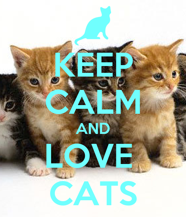 KEEP CALM AND LOVE CATS Poster | kitteh | Keep Calm-o-Matic