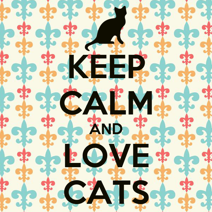 Keep Calm And Love Cats Poster Keep Calm And Love Cats
