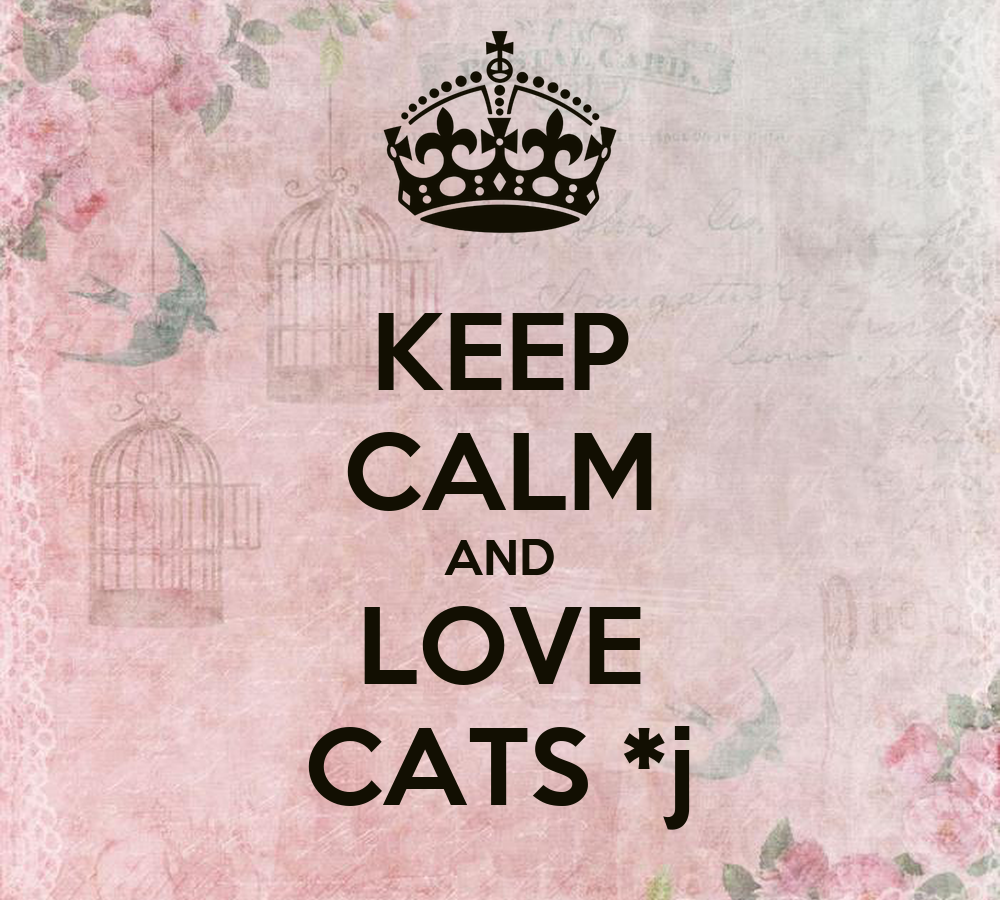 Keep Calm And Love Cats Poster Keep Calm And Love Cats j