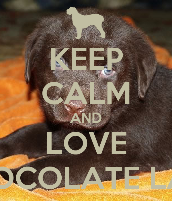 Keep Calm And Love Black Labs KEEP CALM AND L...