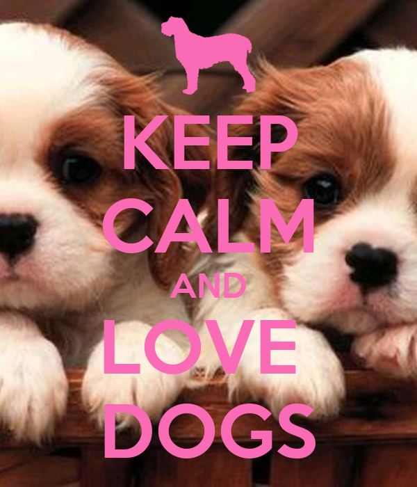 KEEP cALM AND LOVE DOGS Poster cHARLIE Keep calm-o-Matic