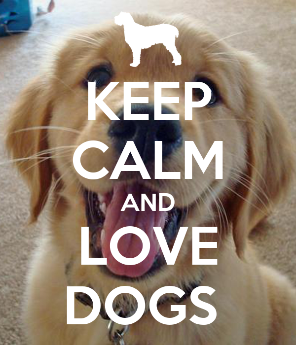 Love Dogs Quotes Wallpaper : KEEP cALM AND LOVE DOGS Poster AOSDU Keep calm-o-Matic